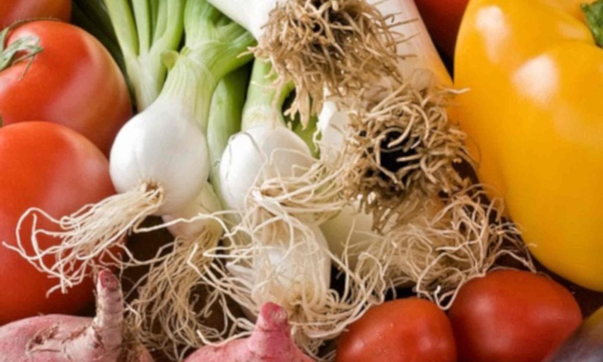"""Projekt """"Nachhaltiges Gemüseorchester"""""""